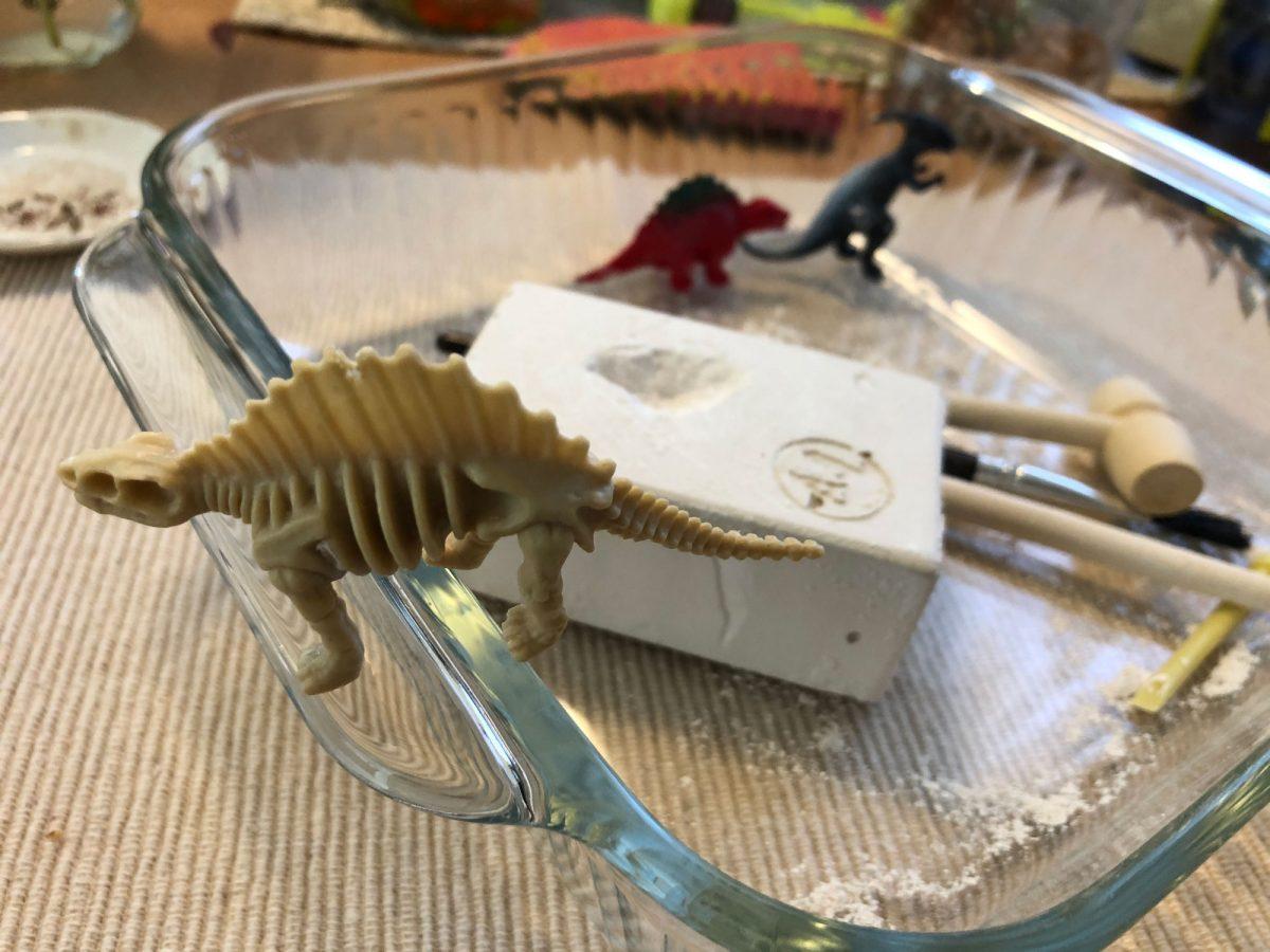Tabletop Dinosaur Dig